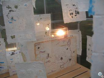 beisinghoff Lunaria annua lichtkasten 5460